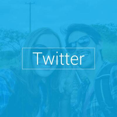 Seg Tweeter
